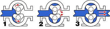 Rotary Lobe Pump Operation
