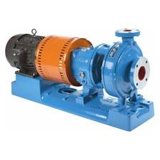 goulds-3196-iframe-process-pump.jpg